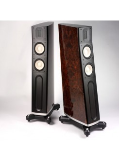 Boxe Raidho Acoustics C-2.1 Walnut