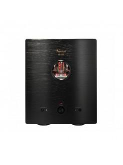 Amplificator de putere mono Vincent SP-T700